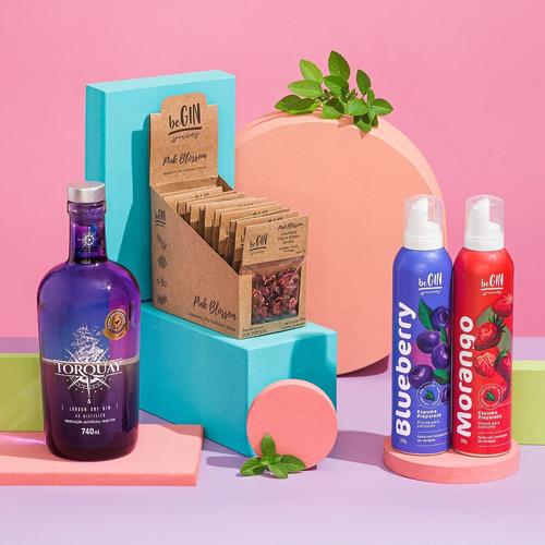 Kit Gin + Box Pink Especiarias + Espumas Morango E Blueberry