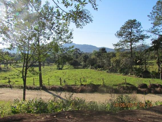 Chácara - Vila Nova - V00230