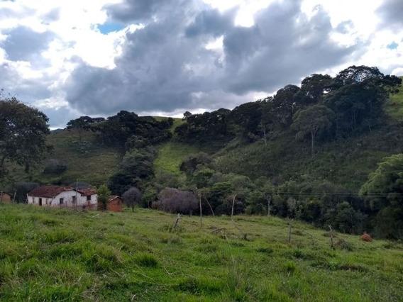 Sitio Em Carvalhos No Sul De Minas Com 24 Ha , Bom De Água, Riacho Dentro Do Terreno. - 223