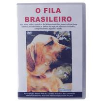 Dvd O Fila Brasileiro