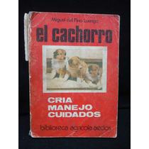 Miguel Del Pino, El Cachorro. Cría, Manejo, Cuidados.