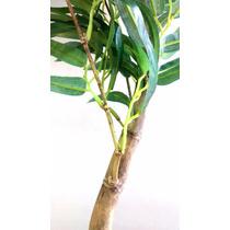 Bambú Mossô Artificial Na Promoção