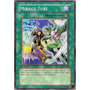 Yu-gi-oh Mirage Tube - Common