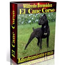 Libro Electrónico El Cane Corso Adiestramiento Y Mas