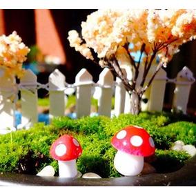 10 Miniaturas Cogumelos Terrários Decoração Jardim Mushroon