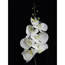 1 Orquidea Artificial Silicone Toque Real Flores Artificiais