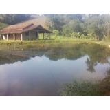 Sitio Ibiúna 48.000 Mt Casa, Lago, Pasto E Área Para Plantar