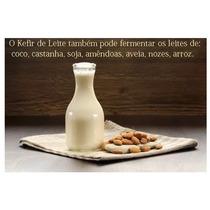 Lactobacilos Vivos Iogurte Compre Aqui