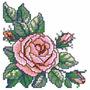 Matriz De Bordado 37 Rosas Ponto Cruz Incrivel - Pes, Jef