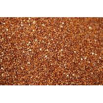 1 Libra De Semillas De Quinoa Roja - Chenopodium Quinoa