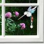 Fantasía De Vidrio Colibrí - Arco Iris - Swarovski Cristal