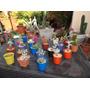 Papa Noel Regala Mini Cactus Y Suculentas Un Mix Ideal