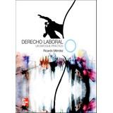 Derecho Laboral 1ed - Jose Ricardo Mendez Cruz - Libro