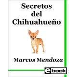 Chihuahua Libro Entrenamiento Canino Cria Cachorro Adulto