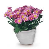Vaso Plastico Flor P/ Parede Marmore 0969