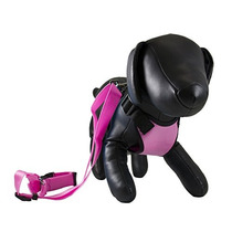 Petcessory Phb-001-pin-s Travel Harness With Leash Small