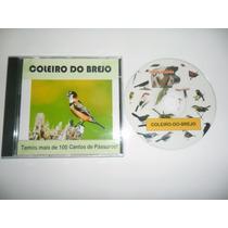 Cd - Canto Coleiro-do-brejo - Cantos De Pássaros - Maior