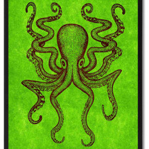 Octopus Animal Green Print On Canvas With Picture Frame, 22