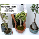 Manual Cultivo Siembra De Bonsai - Jardineria Digital Pdf