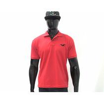 Camisa Pollo Hollister Masculina - A Pronta Entrega Promoção