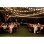 Guirnalda Luz Calida Tipo Feria Deco Navideña Bodas Eventos