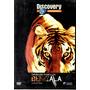 Dvd Operacao Tigres De Bengala -discovery Channel/orig-usado