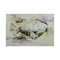 Pintura Artecooper Classics Blue Fish 36 X24 Rectangular Ca
