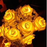Serie 20 Leds Flores, Eventos, Fiestas, Navidad