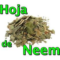 Hoja De Neem Deshidratada 500 Gr Azadirachta Indica
