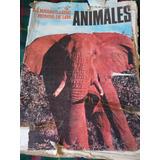 Antiguo Album Figuritas Maravillas Del Mundo De Los Animales