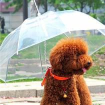 Guarda Chuva Com Guia Para Cães - Acessórios Para Cães