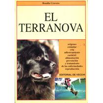 Terranova, El - Rosalia Cravero / De Vecchi
