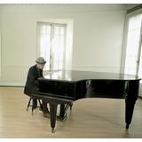 Piano Rachals Schutzmarke Hamburg De 1/2 Cola Como Nuevo