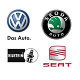 Bujes Meseta Volkswagen Fox Crossfox Polo Seat Ibiza (x1)