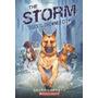 Livro Importado Cães De Drowned City A Tempestade