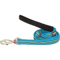 Correa Red Dingo Para Perros Azul Turquesa Corriente Ideal