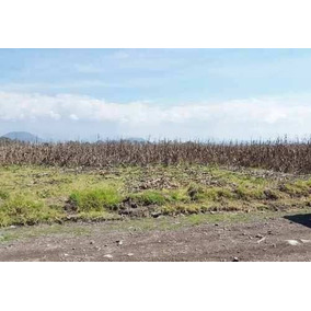 Venta Terreno Agricola