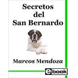 San Bernardo - Libro Adiestramiento Cachorro Adulto Crianza