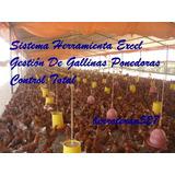 Software De Gallinas Ponedoras Control Total De Granjas