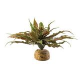 Exo Terra Plantas Artificiales, Cactus Estrella Pp
