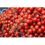 100 Sementes De Tomate Cereja Comum O Caipira Frete Grátis!