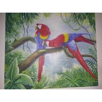 Quadro Pintura A Óleo Sobre Tela Araras Na Amazônia Encomend