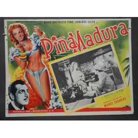 Maria Antonieta Pons Piña Madura Rumbera Rumba Cartel D Cine