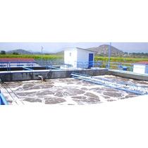 Tratamiento Biologico-bioenzimas Plantas Agua Residual Lagun