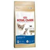 Royal Canin Siames X 7 1/2