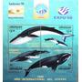 Osl Hojita 70 Sello Uruguay Ballenas Whales