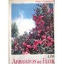Arbustos De Flor - Noel Claraso