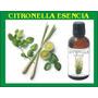 Citronella Aceite Esencial De Citronella 30 Ml