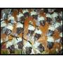 12 Chopps De Chocolate - Cerveza En Bombones Chupetines Chop