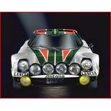 Lancia Stratos Group 4 1974 Cuadro Enmarcado 45x30cm